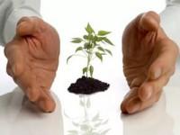 Информация для индивидуальных предпринимателей