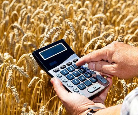 Информационное сообщение для плательщиков единого сельскохозяйственного налога (ЕСХН)