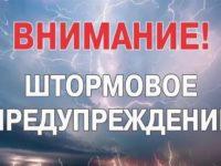 Штормовое предупреждение об опасном природном (гидрометеорологическом) явлении (ОЯ)